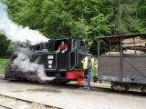 Viseu de Sus - Wassertalbahn