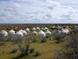 Wüste Kizilkum - Jurtencamp