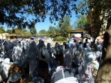 Gebetszeit in Harar