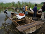 Fischmarkt in Awasa