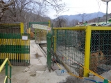 68 Vank Zoo