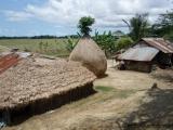 Bauernhuette und Ernte