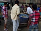 Fischmarkt in Srimangol