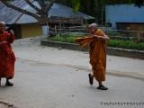 Junge Mönche