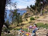 Isla de Sol im Titicacasee