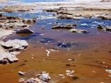 Wasseraugen im Salar de Uyuni