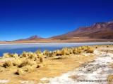 Lagune im Sueden Boliviens