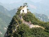Die Natur holt sich einen Wachturm zurueck