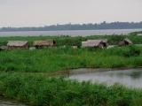 105 - Leben am Fluss