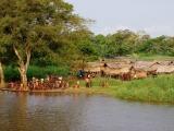 110 - Leben am Fluss