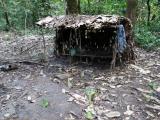 14 - verlassenes Mbuti-Pygmaeen-Dorf