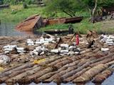 181 Hafen in Mbandaka