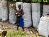 2 - Unterwegs im Osten - Mbuti-Pygmaeen