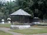 202 - Zoo in Kinshasa