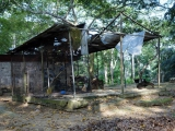 49 - Zoo Kisangani
