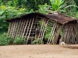 62 - Dorf auf dem Weg nach Yangambi