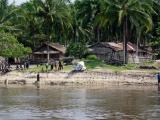 84 - Leben am Fluss