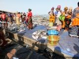 Fischverkauf am Pier
