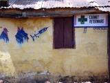 Tierarzt in Dalaba