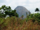 Der Heilige Berg der Guéké