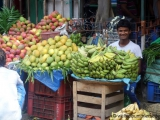 Obst- und Gemuesehaendler