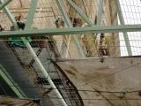 Hebron - Gitter gegen Siedlermuell