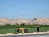 32-Unterwegs-im-Wadi-Doan