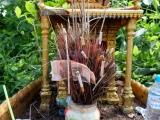 Altar an der Straße