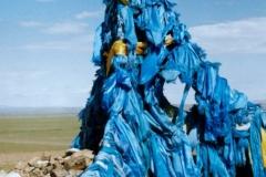 Mongolei - Gobi