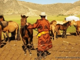 Die Pferde muessen sich an den Besitzer gewoehnen