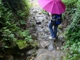 ob Sonne oder Regen, jeder Nepali hat einen Schirm dabei