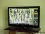 Zoomen bis an die Wurzeln der Reispflanzen