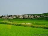 Dorf und Felder