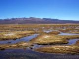 Landschaft auf 4000m Hoehe