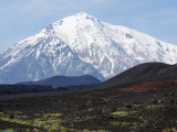 108-Kamtschatkas-Vulkane-Tolbatschik