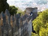 153 - Malaga Alcazaba