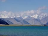 See Karakul