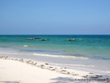 Sansibar - Strand bei Uroa