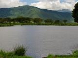 See im Ngorongoro Krater