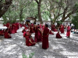 Afternoon debating session im Sera Kloster