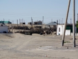 Dorf in der Karakum
