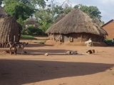 61 - Dorf der Karamojong