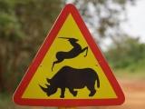 77 - Ziwa Nashorn-Schutzgebiet