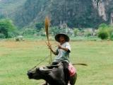 Bauer-auf-seinem-Wasserbueffel