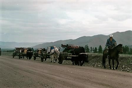 Nomaden-Trek-Gobi