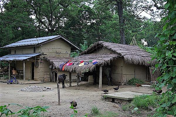 Tharu-Dschungel-Nepal