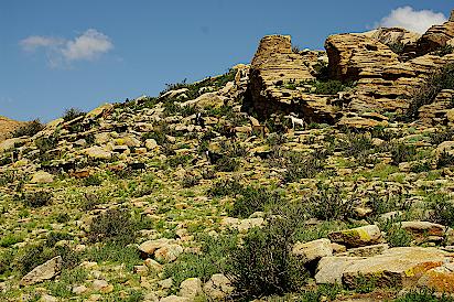 Mongolei-Erdmuttersteine