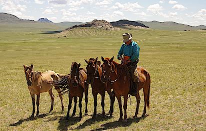 Nomade-Pferdezuechter