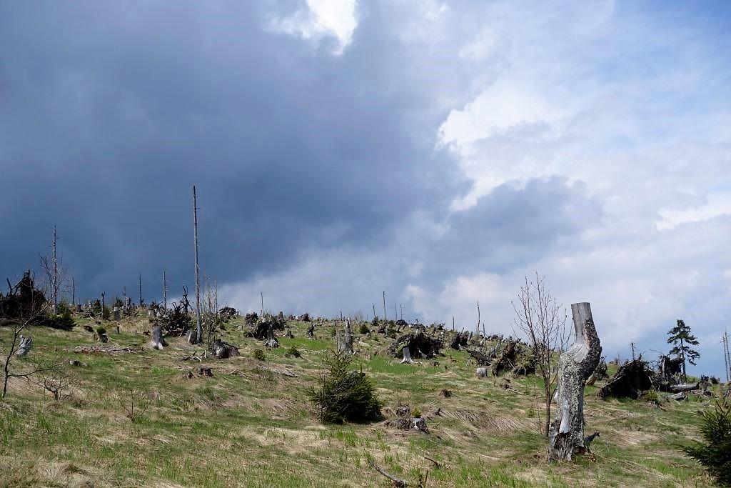 Acht-Tausender-Wanderung-in-Bayern