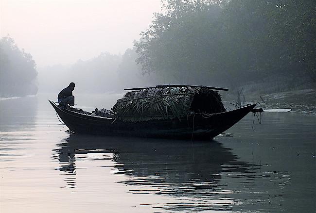 Fischer-im-Morgennebel-in-den-Sundarbans-in-Bangladesch